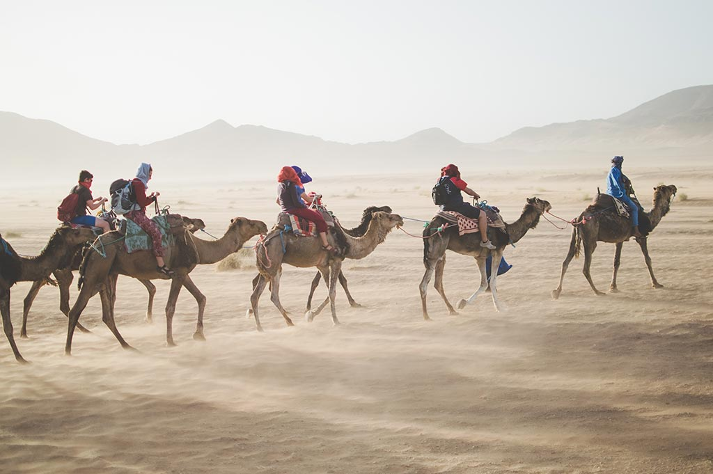 Group of tourists riding camels in the desert of Egypt. A very hot day.